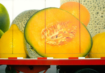 Sodifruit Cantaloupe, Boulevard Pie-IX, Montréal,ink jet print on matte paper (12x16 inches), detail from Food Grid (70x220 inches), 2004