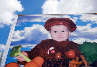 Broccoli Girl, Viau & Fils, Vaudreuil-Dorion, Québec, ink jet print on matte paper (12x16 inches), detail from Food Grid (70x220 inches), 2006