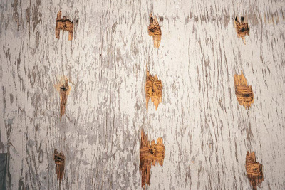 Grey plywood with holes, from the Zone series, Montréal, archival ink jet print on Arches paper (26x41 inches), 1997